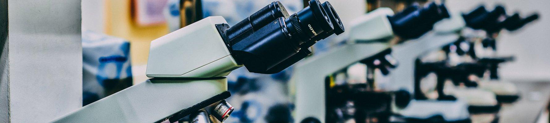 microscoop_web